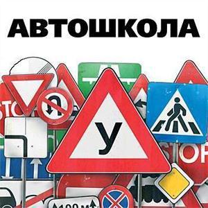 Автошколы Шелопугино