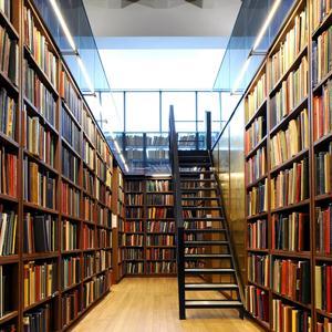 Библиотеки Шелопугино