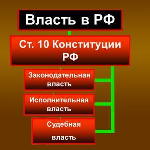Органы власти Шелопугино