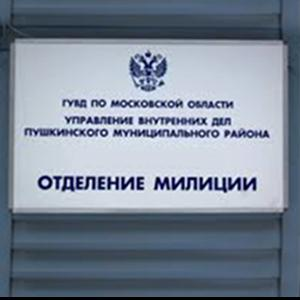 Отделения полиции Шелопугино
