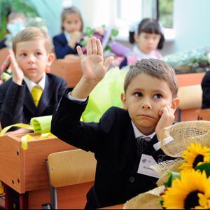 Школы Шелопугино